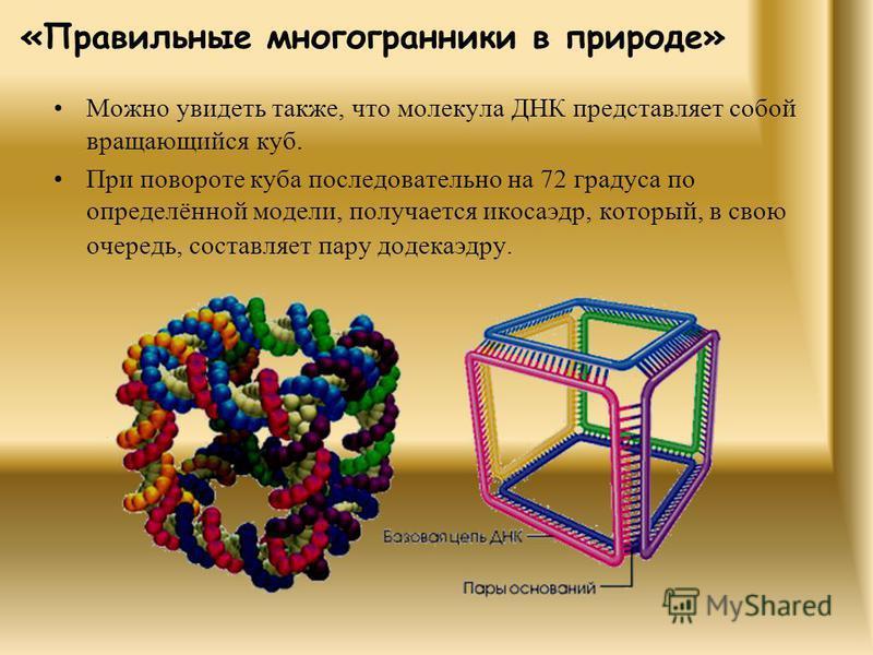 Можно увидеть также, что молекула ДНК представляет собой вращающийся куб. При повороте куба последовательно на 72 градуса по определённой модели, получается икосаэдр, который, в свою очередь, составляет пару додекаэдру. «Правильные многогранники в пр
