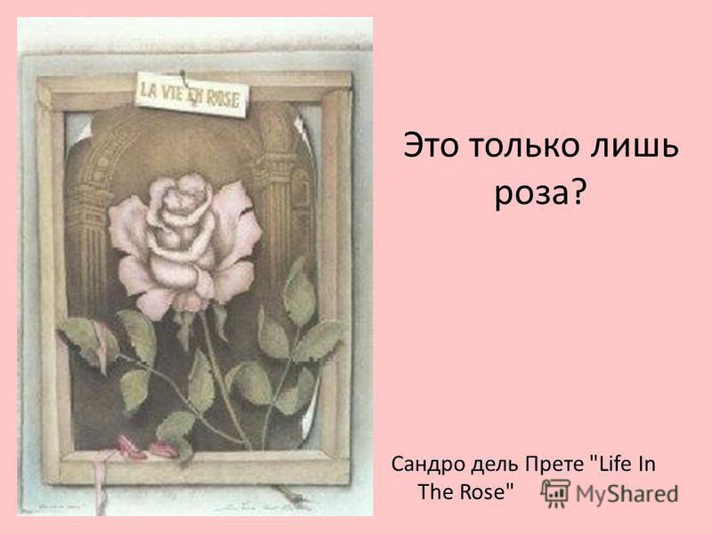 Это только лишь роза? Сандро дель Прете Life In The Rose