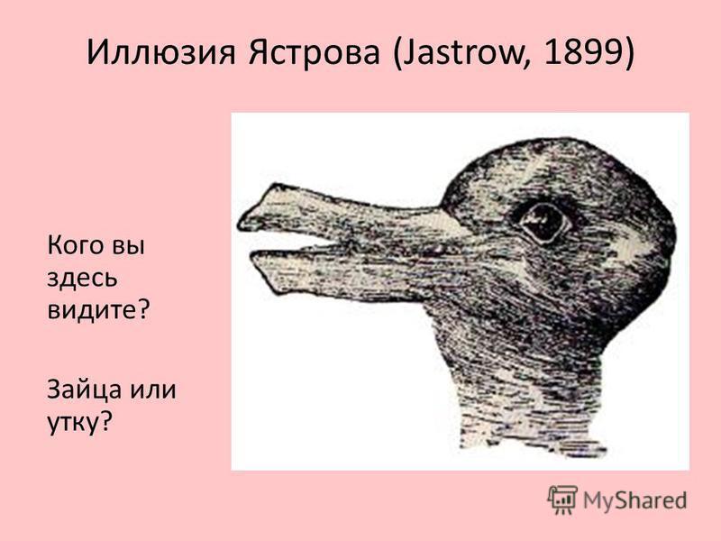 Иллюзия Ястрова (Jastrow, 1899) Кого вы здесь видите? Зайца или утку?