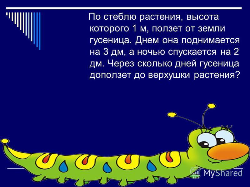 По стеблю растения, высота которого 1 м, ползет от земли гусеница. Днем она поднимается на 3 дм, а ночью спускается на 2 дм. Через сколько дней гусеница доползет до верхушки растения?
