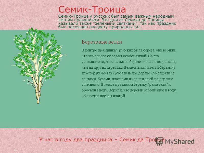 Березовые ветки В центре праздника у русских была береза, они верили, что это дерево обладает особой силой. На это указывало то, что листья на березе появляются раньше, чем на других деревьях. Везде втыкали ветви березы (в некоторых местах срубали це
