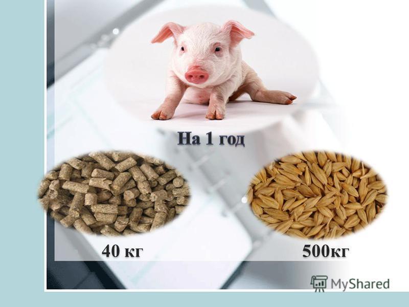 40 кг 500 кг 500 кг