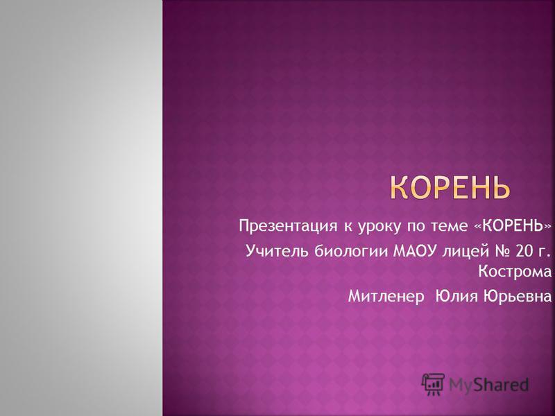 Презентация к уроку по теме «КОРЕНЬ» Учитель биологии МАОУ лицей 20 г. Кострома Митленер Юлия Юрьевна