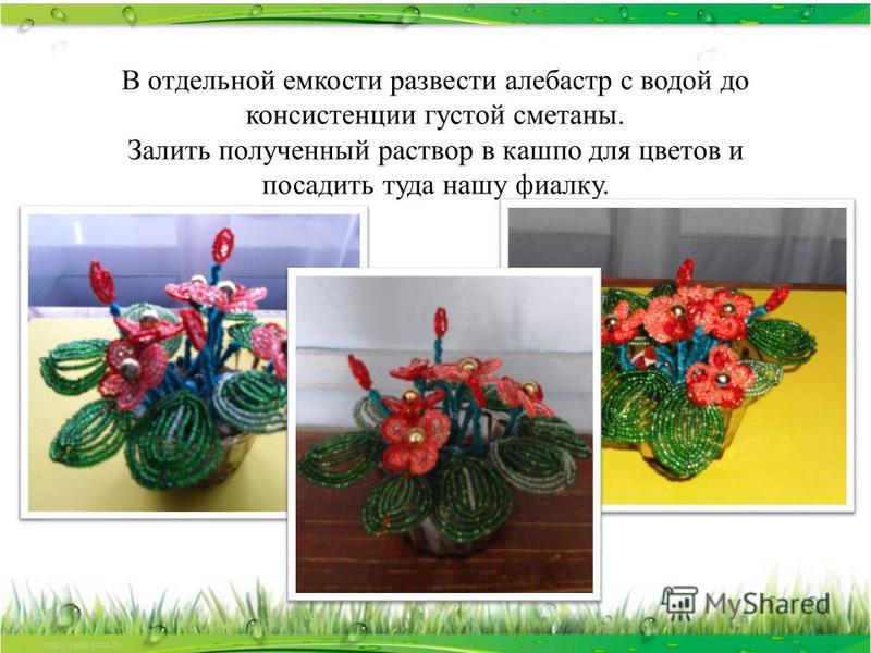В отдельной емкости развести алебастр с водой до консистенции густой сметаны. Залить полученный раствор в кашпо для цветов и посадить туда нашу фиалку.