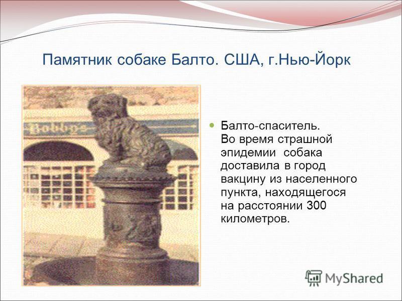 Памятник собаке Балто. США, г.Нью-Йорк Балто-спаситель. Во время страшной эпидемии собака доставила в город вакцину из населенного пункта, находящегося на расстоянии 300 километров.