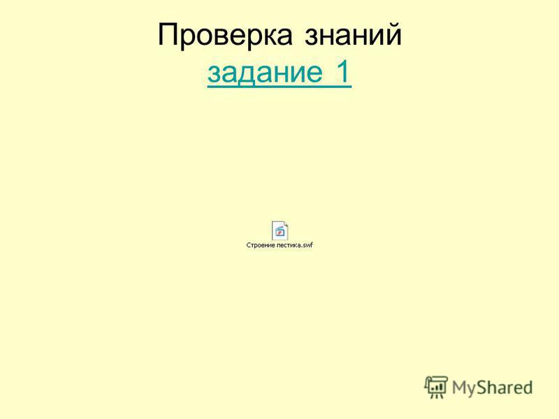 Проверка знаний задание 1 задание 1