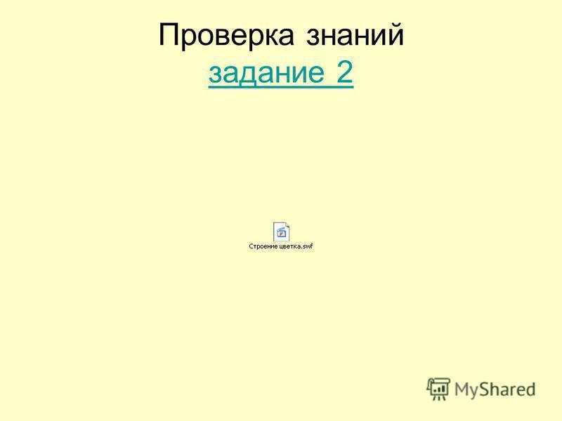 Проверка знаний задание 2 задание 2