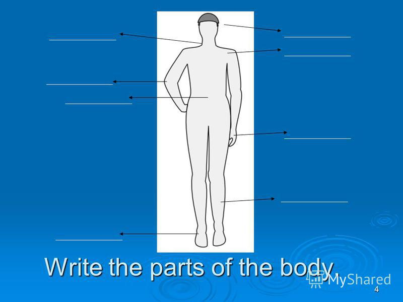 4 Write the parts of the body.