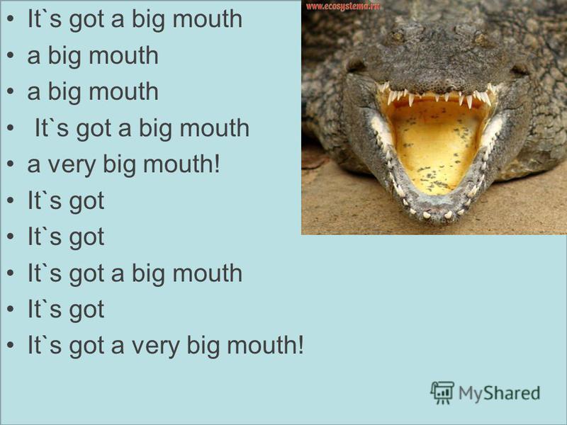 It`s got a big mouth a big mouth It`s got a big mouth a very big mouth! It`s got It`s got a big mouth It`s got It`s got a very big mouth!