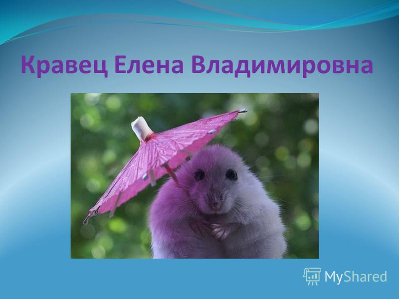 Кравец Елена Владимировна