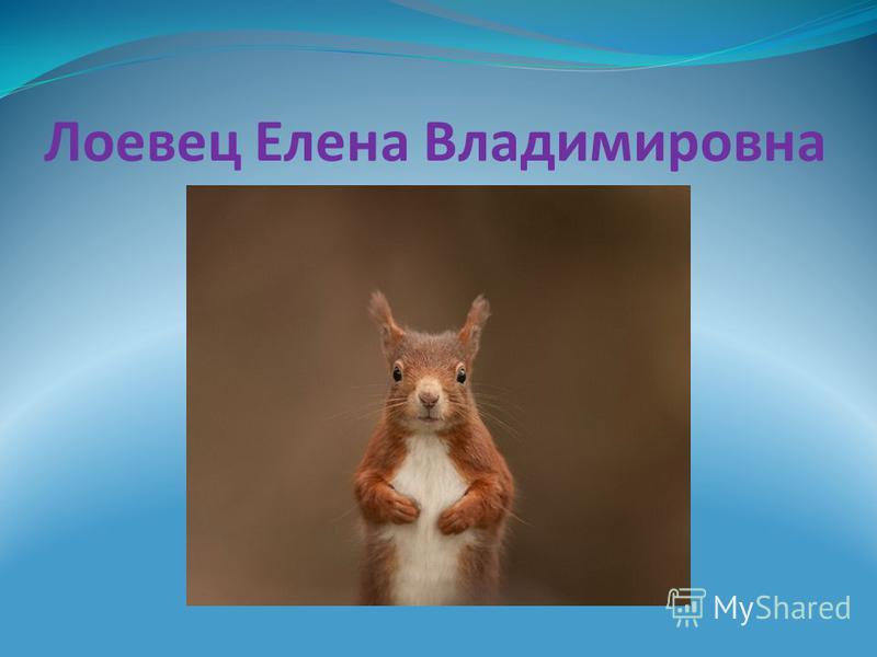 Лоевец Елена Владимировна