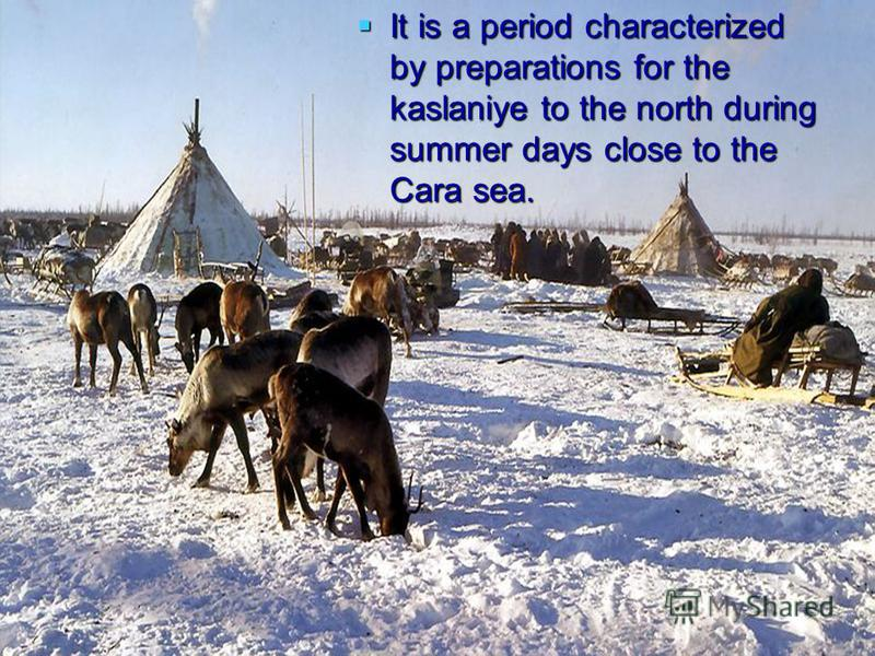 It is a period characterized by preparations for the kaslaniye to the north during summer days close to the Cara sea. It is a period characterized by preparations for the kaslaniye to the north during summer days close to the Cara sea.