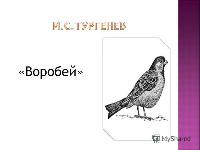 «Воробей»