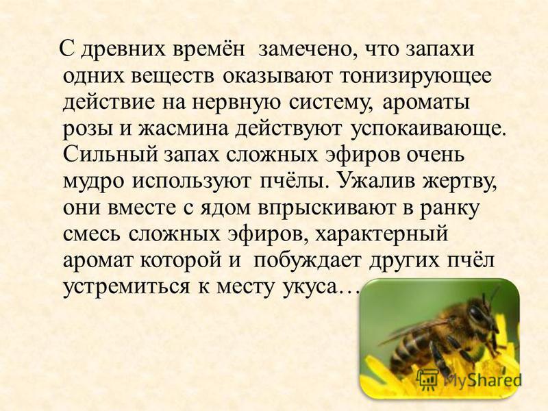 С древних времён замечено, что запахи одних веществ оказывают тонизирующее действие на нервную систему, ароматы розы и жасмина действуют успокаивающе. Сильный запах сложных эфиров очень мудро используют пчёлы. Ужалив жертву, они вместе с ядом впрыски