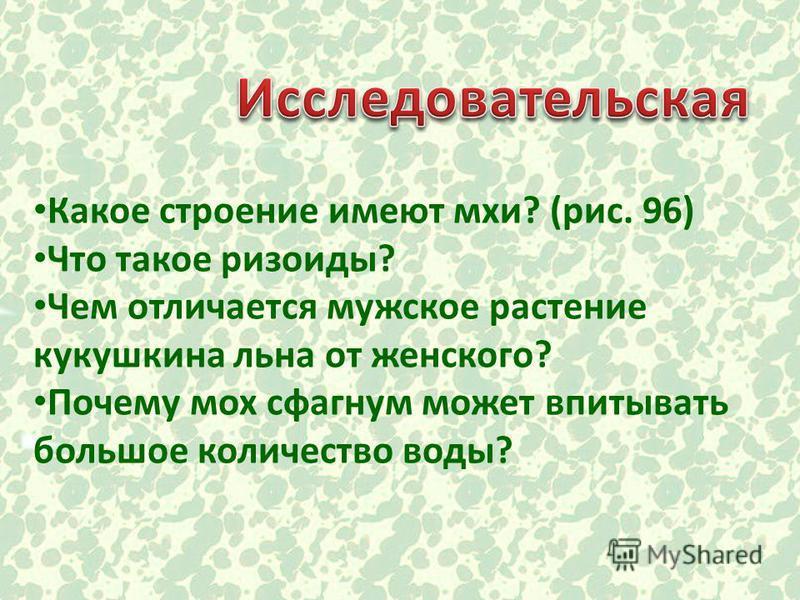 Какое строение имеют мхи? (рис. 96) Что такое ризоиды? Чем отличается мужское растение кукушкина льна от женского? Почему мох сфагнум может впитывать большое количество воды?
