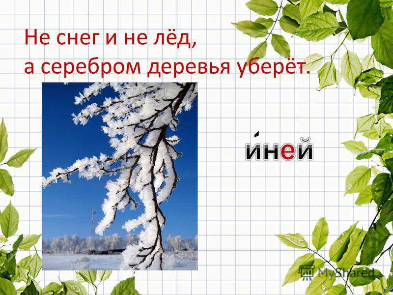 Не снег и не лёд, а серебром деревья уберёт.