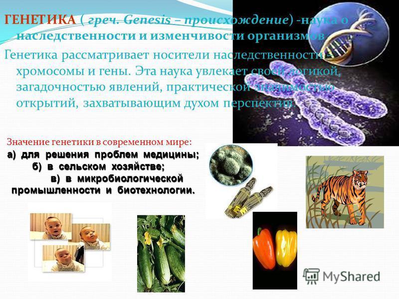 ГЕНЕТИКА ( греч. Genesis – происхождение) -наука о наследственности и изменчивости организмов Генетика рассматривает носители наследственности – хромосомы и гены. Эта наука увлекает своей логикой, загадочностью явлений, практической значимостью откры