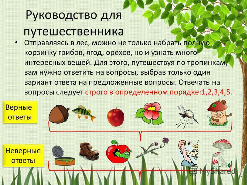 Учитель биологии МБОУ Петровская СОШ Галковская И.И. ресурсы