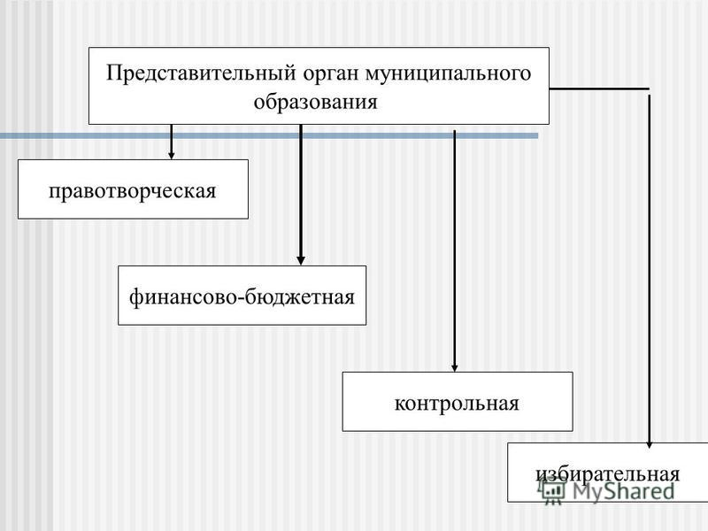 Представительный орган муниципального образования правотворческая финансово-бюджетная контрольная избирательная