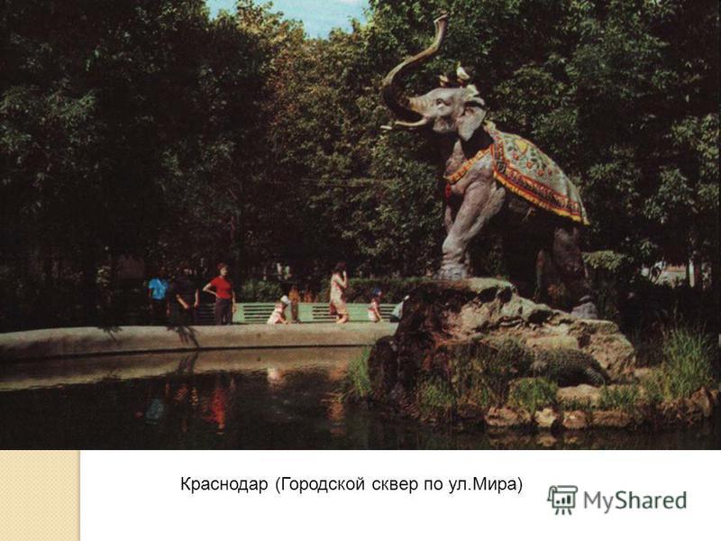 Краснодар (Городской сквер по ул.Мира)