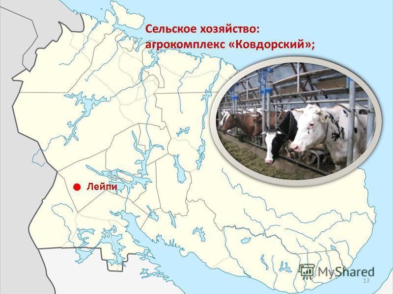 Лейпи Сельское хозяйство: агрокомплекс «Ковдорский»; 13