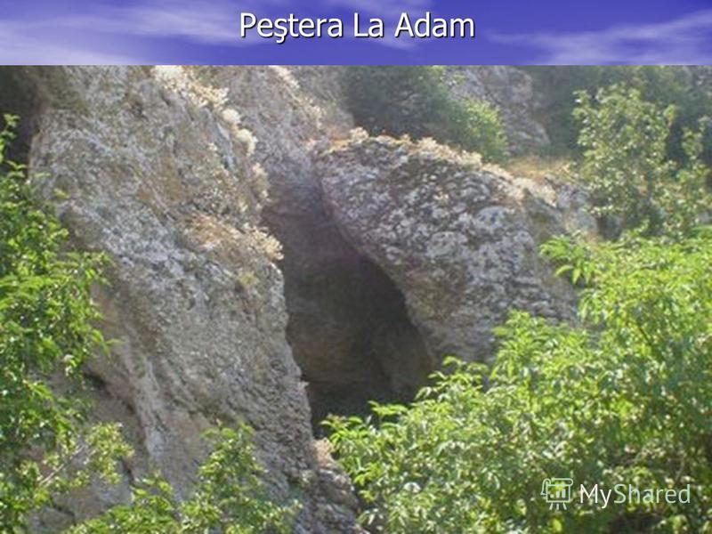 Peştera La Adam