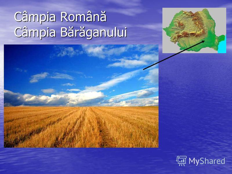 Câmpia Română Câmpia Bărăganului
