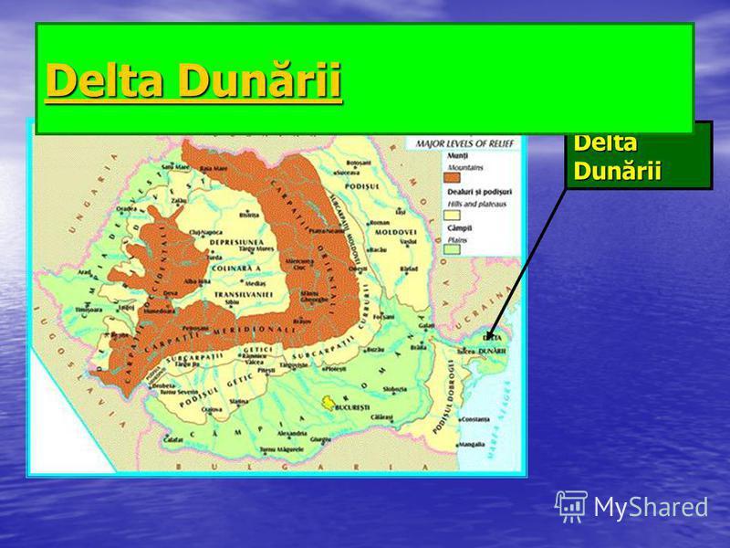 Delta Dunării Delta Dunării Delta Dunării Delta Dunării