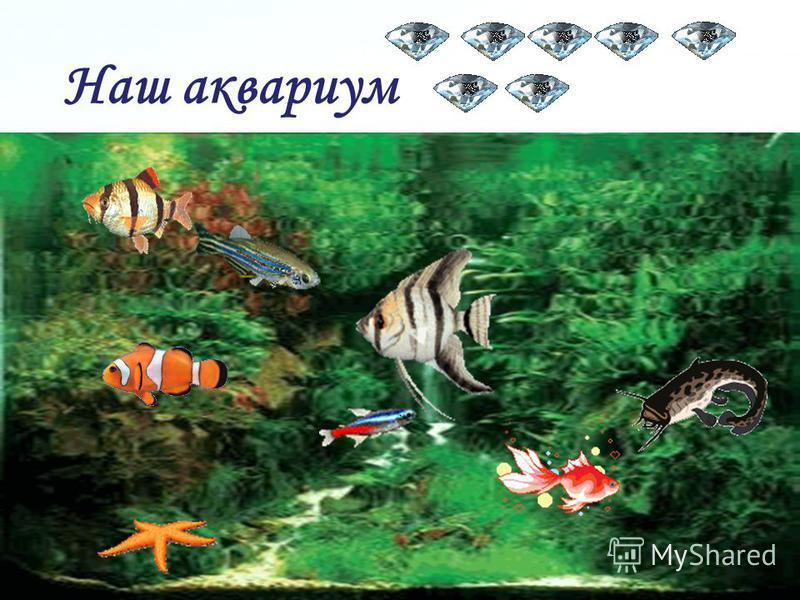 Page 31 Проверка: У аквариума - Р. п., киска – И. п., к рыбкам - Д. п., к рыбкам - Д. п., лапкой - Тв. п. рыбёшки – И. п., за стеклом -, рыбёшки – И. п., за стеклом - Тв. п., корм – В. п., на аквариум - В. п.