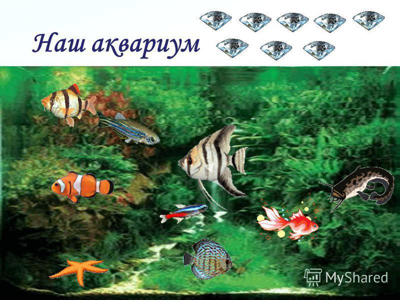 Page 33 Задание 7. Части речи. Подобрать антонимы к именам прилагательным в словосочетаниях: чистая вода, голодные рыбы, большой аквариум, глубокий водоём.