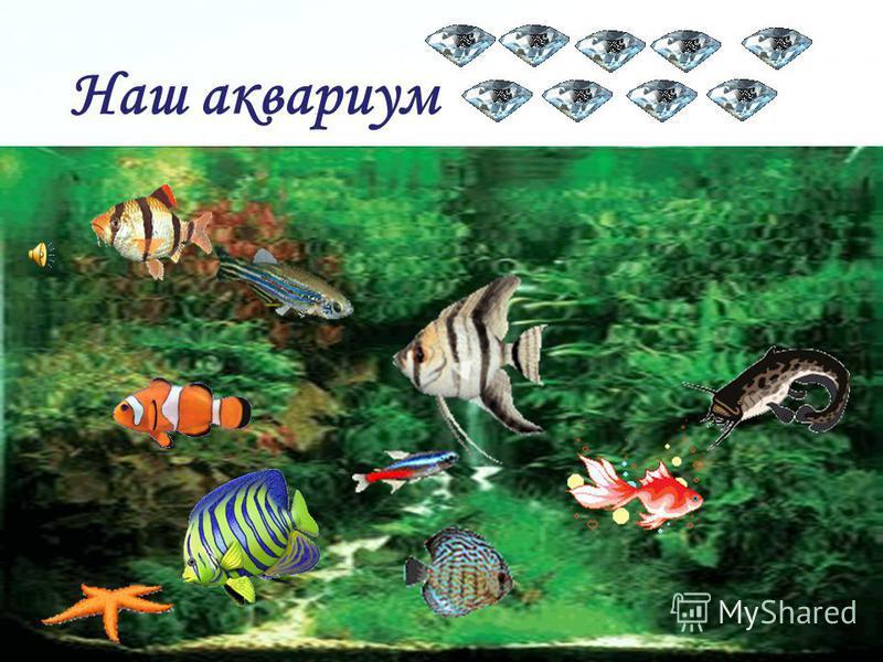 Page 36 Проверка: Чувствовать себя как рыба в воде. Без труда не выловишь и рыбку из пруда. Непойманная рыбка всегда большей кажется. Хочешь поймать рыбу не взбирайся на дерево.