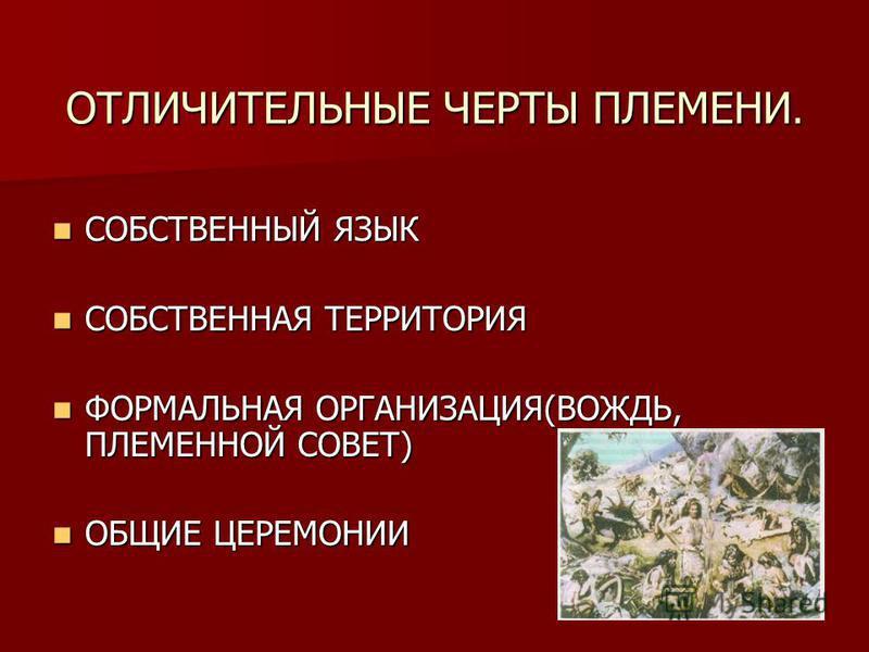 ОТЛИЧИТЕЛЬНЫЕ ЧЕРТЫ ПЛЕМЕНИ. СОБСТВЕННЫЙ ЯЗЫК СОБСТВЕННЫЙ ЯЗЫК СОБСТВЕННАЯ ТЕРРИТОРИЯ СОБСТВЕННАЯ ТЕРРИТОРИЯ ФОРМАЛЬНАЯ ОРГАНИЗАЦИЯ(ВОЖДЬ, ПЛЕМЕННОЙ СОВЕТ) ФОРМАЛЬНАЯ ОРГАНИЗАЦИЯ(ВОЖДЬ, ПЛЕМЕННОЙ СОВЕТ) ОБЩИЕ ЦЕРЕМОНИИ ОБЩИЕ ЦЕРЕМОНИИ