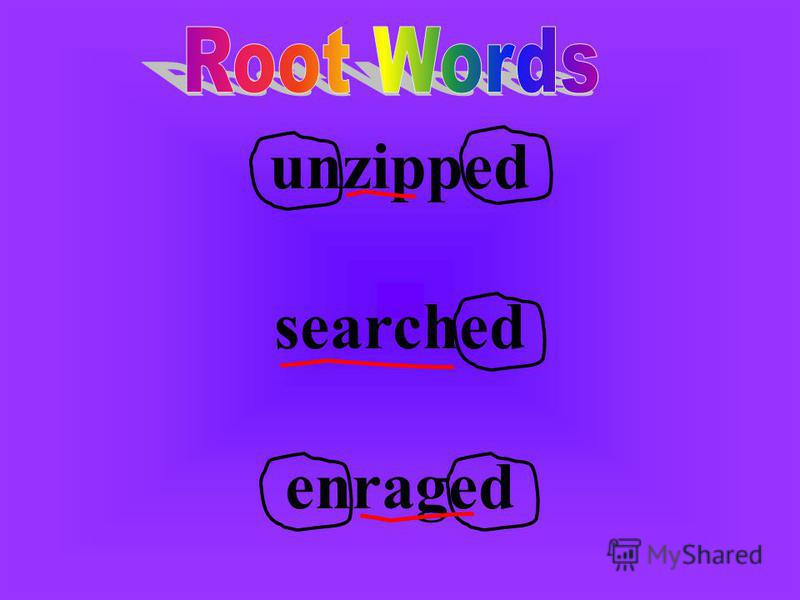 unzipped searched enraged