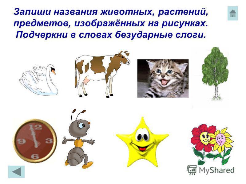 Запиши названия животных, растений, предметов, изображённых на рисунках. Подчеркни в словах безударные слоги.