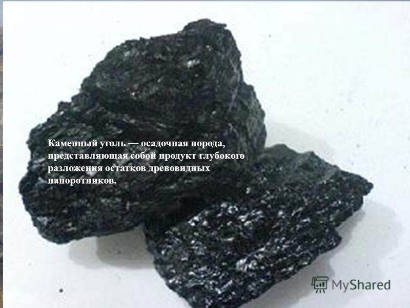 Каменный уголь осадочная порода, представляющая собой продукт глубокого разложения остатков древовидных папоротников.