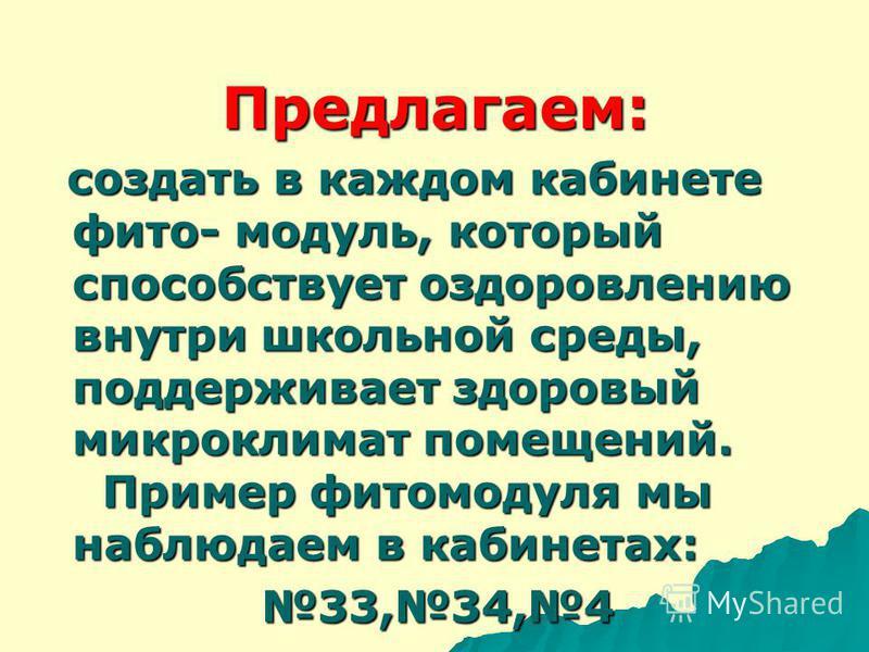 Драцена Роициссус