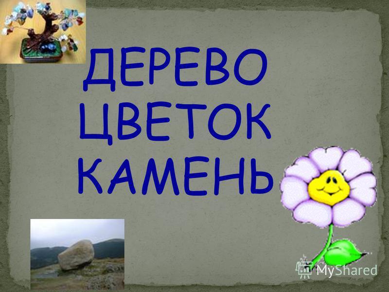ДИВАН ШКАФ
