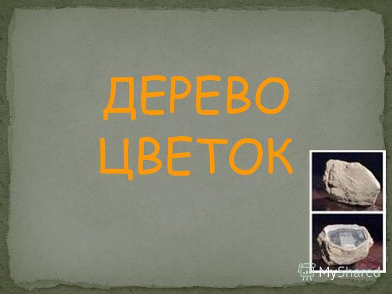 ДЕРЕВО ЦВЕТОК КАМЕНЬ
