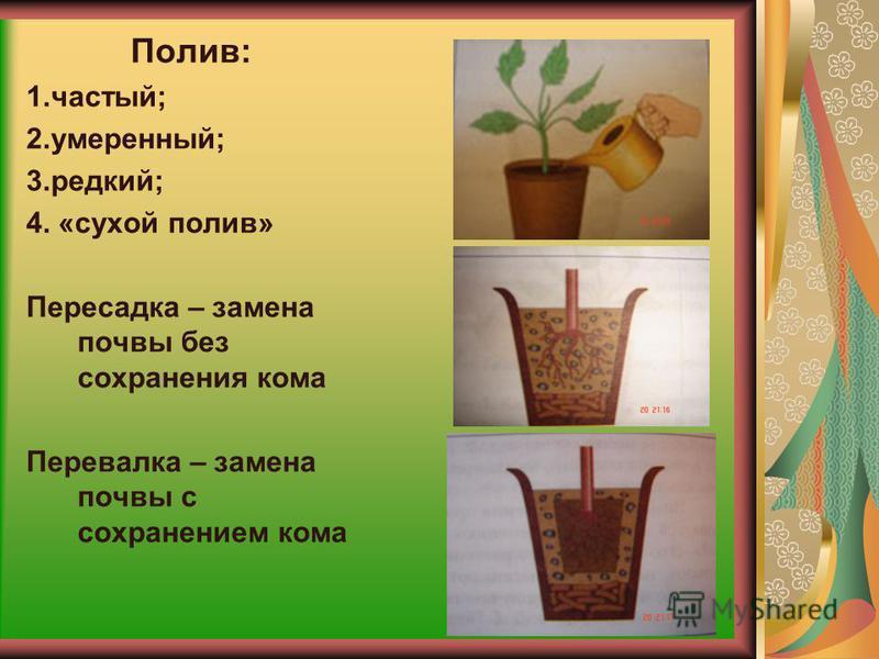 Почвенная смесь – это смесь для посадки комнатных растений Каждому растению нужно подобрать почвенную смесь. Различают почвенную смесь: -тяжелую; - среднюю; - легкую. Почвенная смесь состоит из листовой и дерновой земли, песка. Любую смесь можно прио