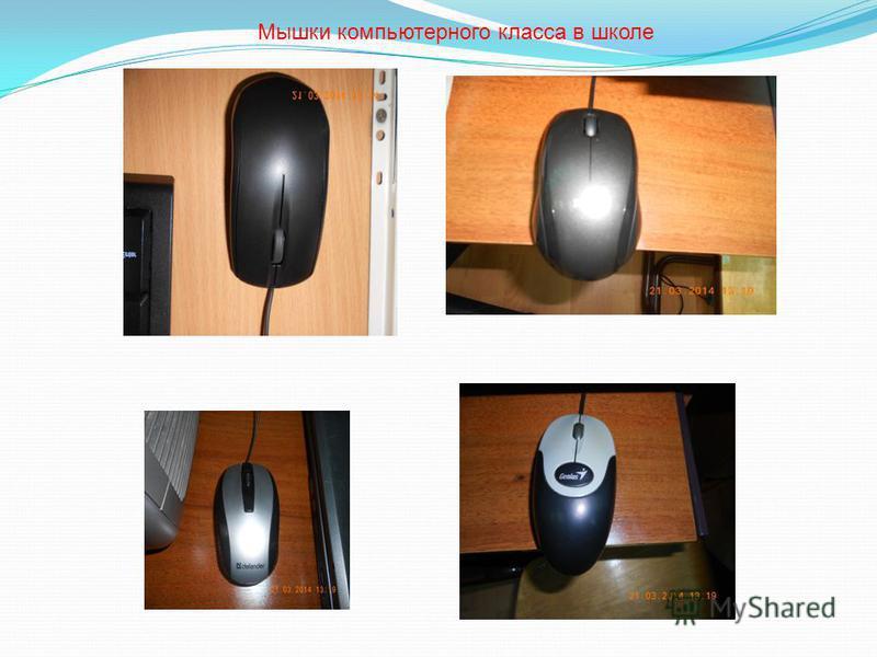 Мышки компьютерного класса в школе