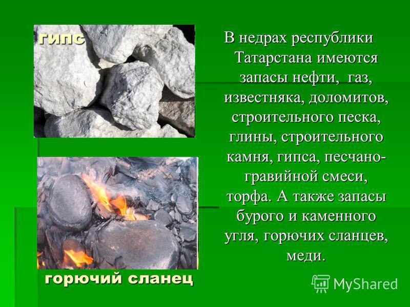 В недрах республики Татарстана имеются запасы нефти, газ, известняка, доломитов, строительного песка, глины, строительного камня, гипса, песчано- гравийной смеси, торфа. А также запасы бурого и каменного угля, горючих сланцев, меди. горючий сланец ги