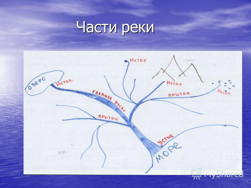 Части реки Части реки