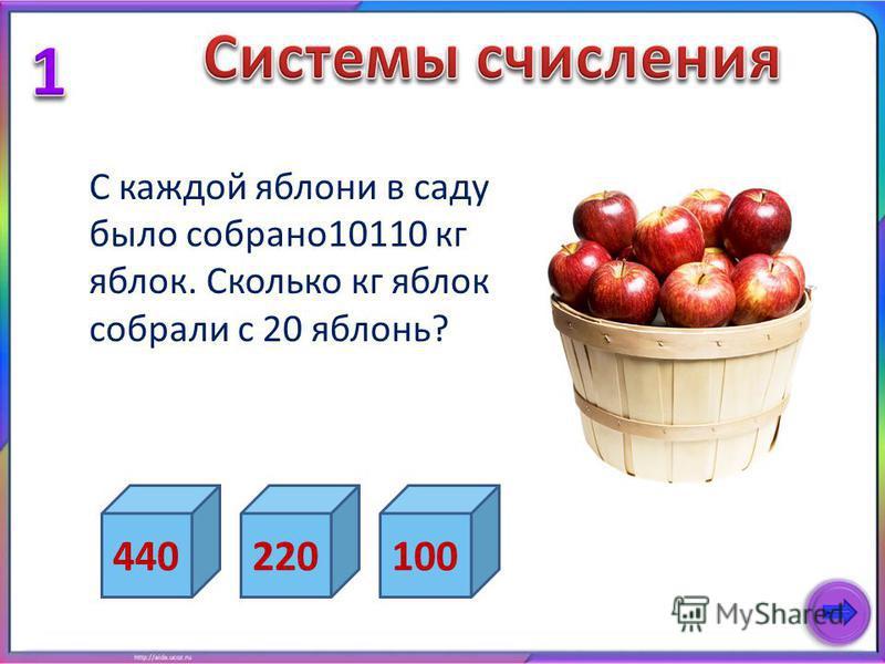 С каждой яблони в саду было собрано 10110 кг яблок. Сколько кг яблок собрали с 20 яблонь? 440220100