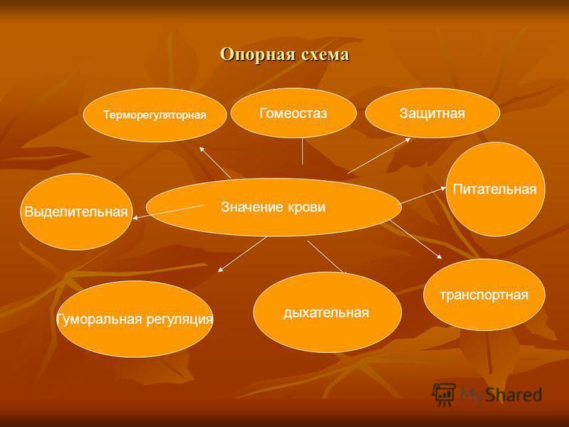 Опорная схема Значение крови Выделительная Терморегуляторная Гуморальная регуляция дыхательная транспортная Питательная Защитная Гомеостаз