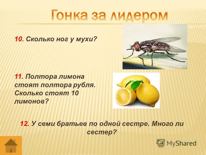10. Сколько ног у мухи? 11. Полтора лимона стоят полтора рубля. Сколько стоят 10 лимонов? 12. У семи братьев по одной сестре. Много ли сестер?