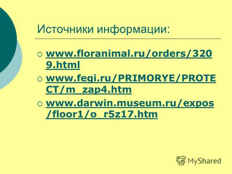 Источники информации: www.floranimal.ru/orders/320 9. html www.floranimal.ru/orders/320 9. html www.fegi.ru/PRIMORYE/PROTE CT/m_zap4. htm www.fegi.ru/PRIMORYE/PROTE CT/m_zap4. htm www.darwin.museum.ru/expos /floor1/o_r5z17. htm www.darwin.museum.ru/e
