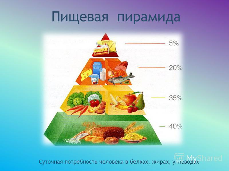 Пищевая пирамида Суточная потребность человека в белках, жирах, углеводах