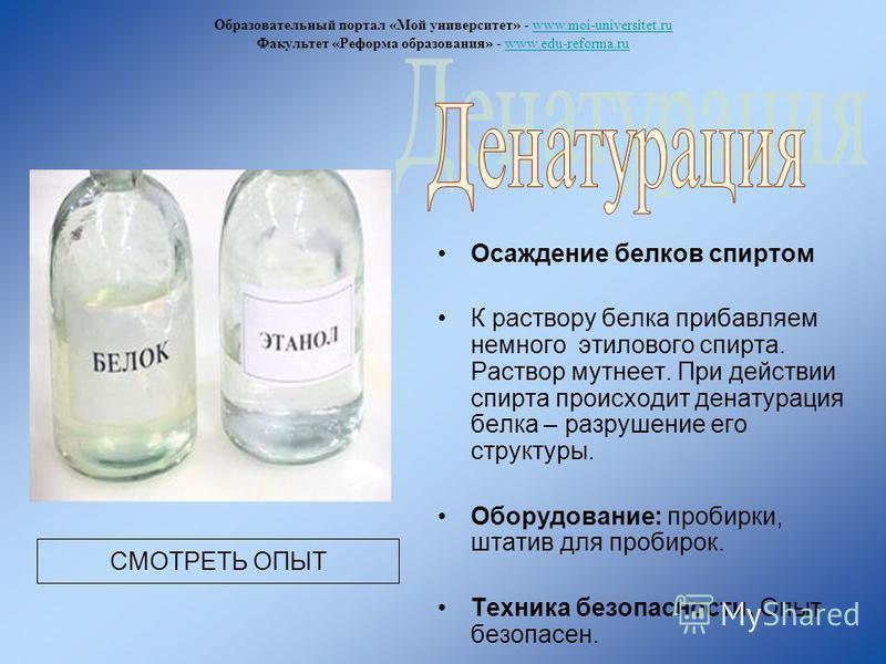 Осаждение белков спиртом К раствору белка прибавляем немного этилового спирта. Раствор мутнеет. При действии спирта происходит денатурация белка – разрушение его структуры. Оборудование: пробирки, штатив для пробирок. Техника безопасности. Опыт безоп
