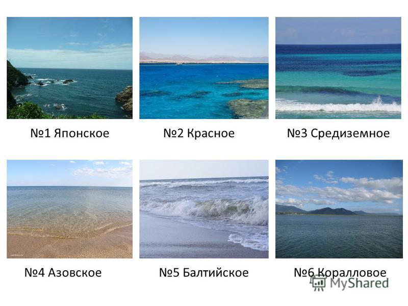 1 Японское 2 Красное 3 Средиземное 4 Азовское 5 Балтийское 6 Коралловое