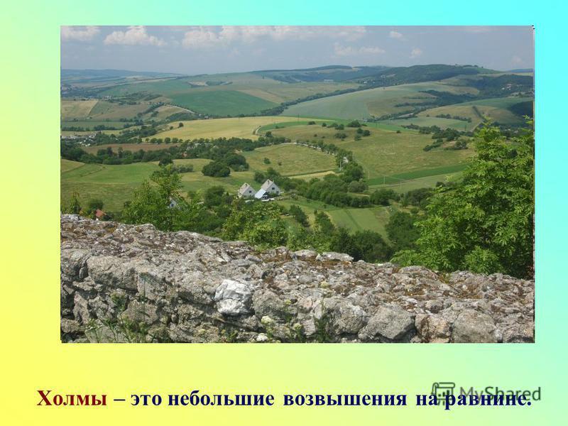 Холмы – это небольшие возвышения на равнине.